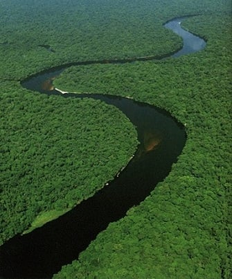 CONGO RIVER Over Interesting Key Facts - African rivers by length