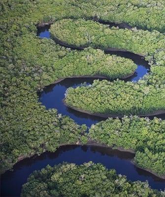 Zambezi-River.jpg